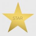 étoile étoile 17 x 17 Dorée 4/1 300